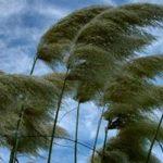 Angin-kencang