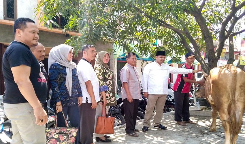Muhajidin Nur Hasim Bagikan Sapi Kurban ke FKKC dan DPC Gerindra Kab. Cirebon