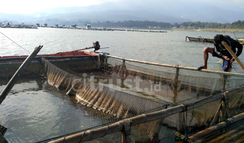 Waduk Darma Dimanfaatkan Warga Sekitar untuk Budi Daya Ikan Air Tawar