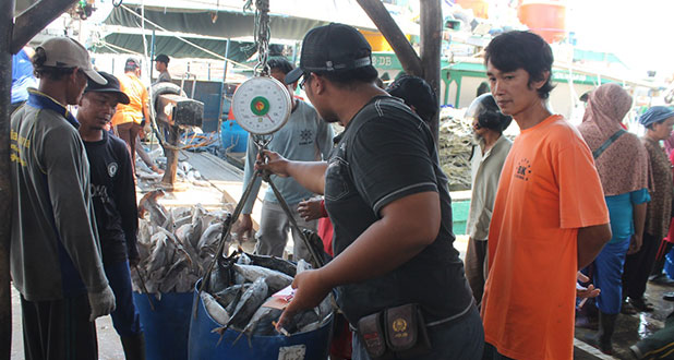 tempat-Pelelangan-ikan