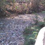 Masyarakat Masih Gemar Buang Sampah ke Sungai