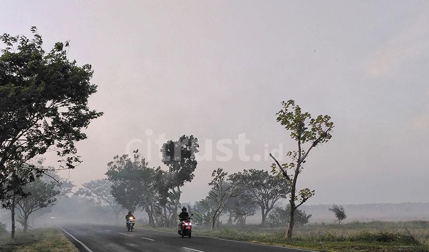 Kabut Asap Pembakaran Jerami Mengganggu Aktivitas Pengendara