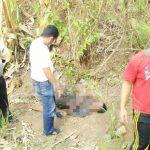 Tewas Memegangi Perut, Jenazah Tak Dikenal Gegerkan Warga Desa Palir